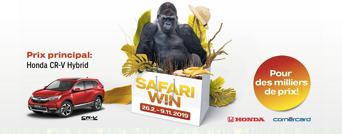 Bannière roadshow Safari Win 2019